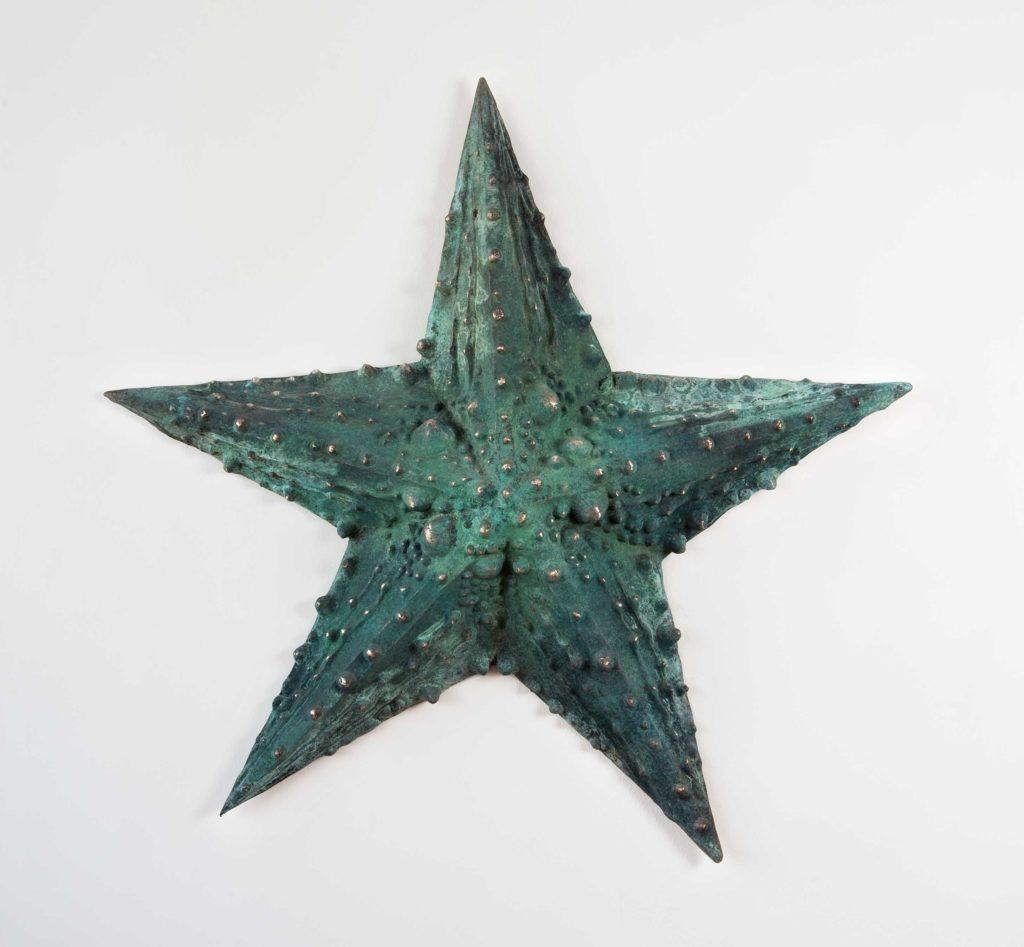 No Estrella Asterias